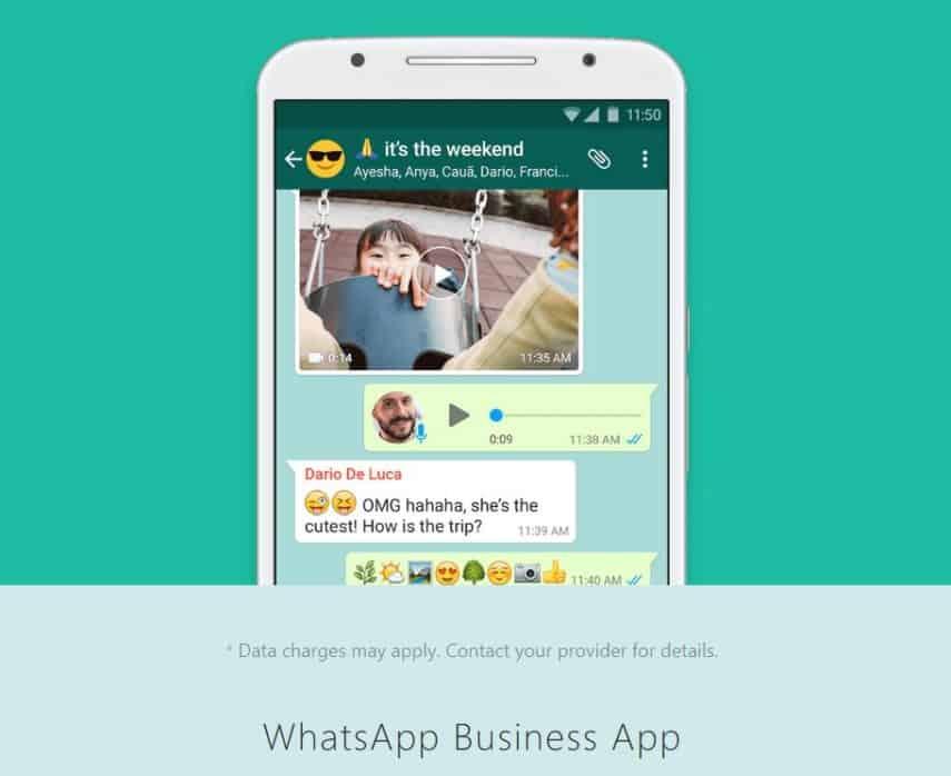 WhatsApp business app screenshot