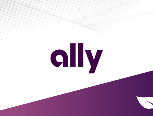DollarSprout Ally Bank Review