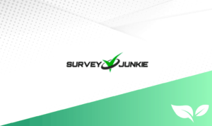 DollarSprout Survey Junkie Review
