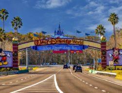 Free Disney World vacation