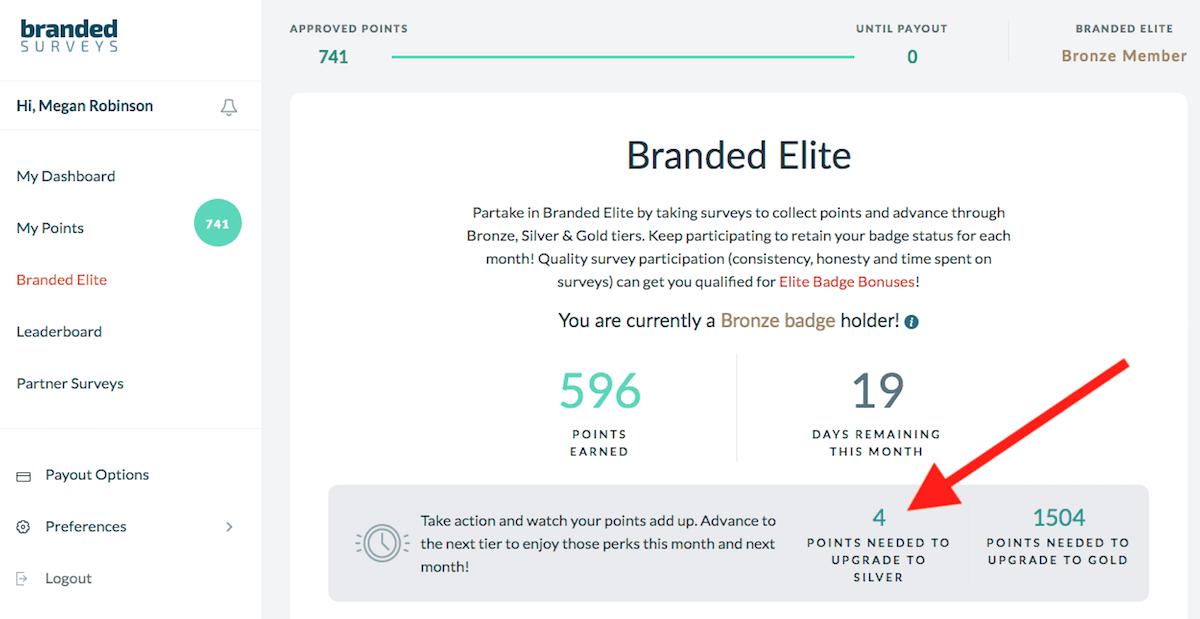 Branded Surveys Silver edited